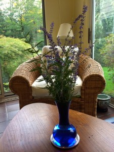 Russian Sage in Blue Glass Vase
