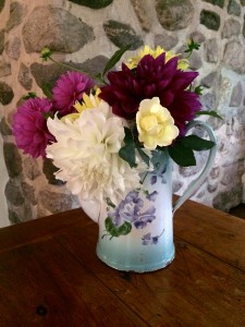 Dahlias and Garden Roses in Antique Floral Pitcher Vase